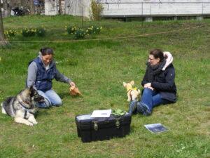 [:fr]Après-midi découverte Tellington TTouch, Avril 2020[:] @ Bioschwand | Münsingen | Bern | Suisse