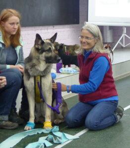 [:fr]Formation professionelle Tellington TTouch® - Coach pour chiens et animaux de compagnie, module 9_6[:] @ Bioschwand | Münsingen | Bern | Suisse