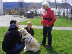 (Français) Formation professionelle Tellington TTouch® - Coach pour chiens et animaux de compagnie, module 9_1 @ Bioschwand | Münsingen | Bern | Suisse