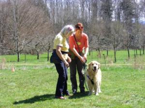 Tellington TTouch-Coach für Hunde und Kleintiere, Ausbildungsmodul 9_2 @ Bioschwand | Münsingen | Bern | Suisse