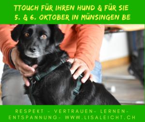 [:de]Tellington TTouch für Ihren Hund und für Sie - Einsteigerkurs Oktober 2019 [:] @ Bioschwand | Münsingen | Bern | Schweiz