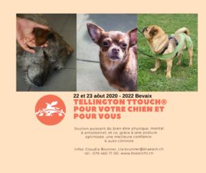 [:fr]NE-Tellington TTouch pour votre chien et pour vous - Cours de Base à 2022 Bevaix[:] @ Lausanne | Vaud | Schweiz