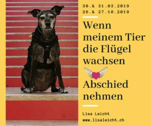 'Wenn meinem Tier die Flügel wachsen' - Abschied nehmen @ Bioschwand | Münsingen | Bern | Schweiz
