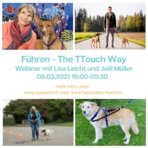 [:de]Webinar Führen - The TTouch Way[:] @ Online via Zoom