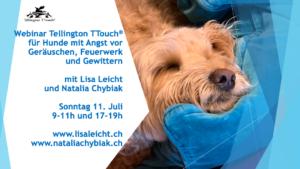 """[:de]Webinar """"Tellington TTouch für Hunde mit Angst vor Geräuschen, Feuerwerk und Gewittern""""[:] @ Online Veranstaltung"""
